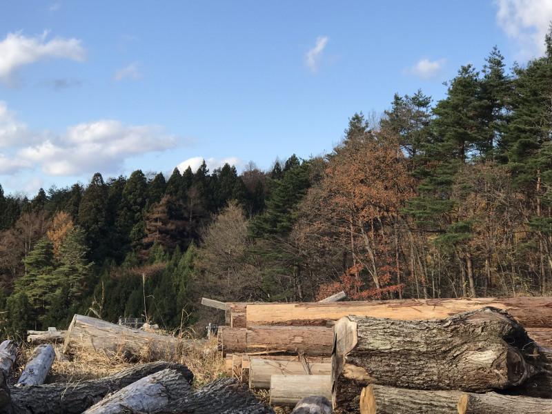 青森の森林組合で国産材インテリアセミナー 1日目